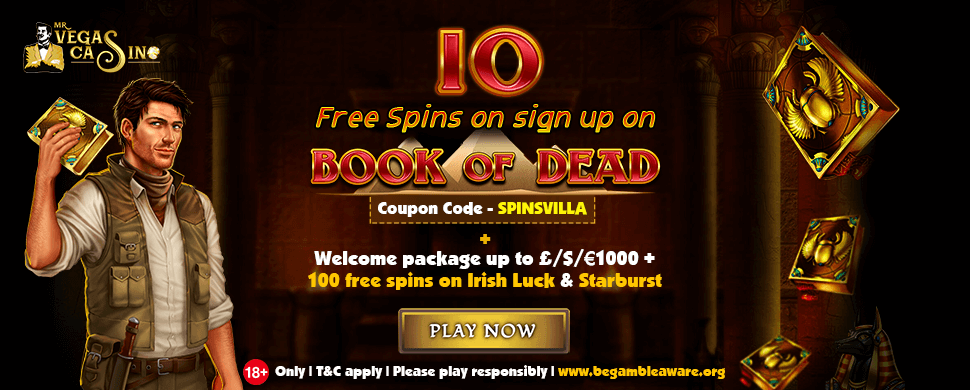 10free spins on Book of Dead main image